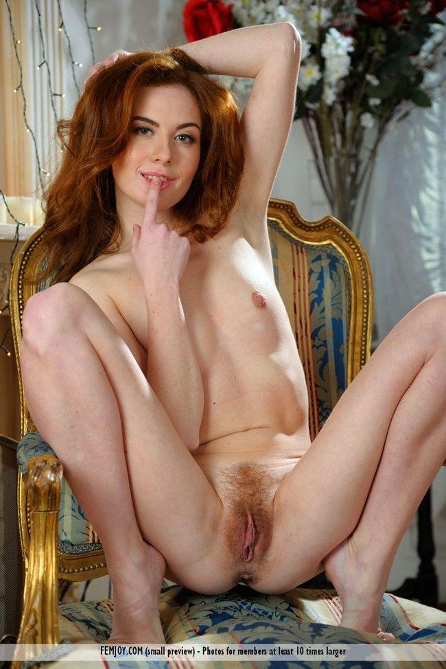 照片的毛茸茸的 pussies-24