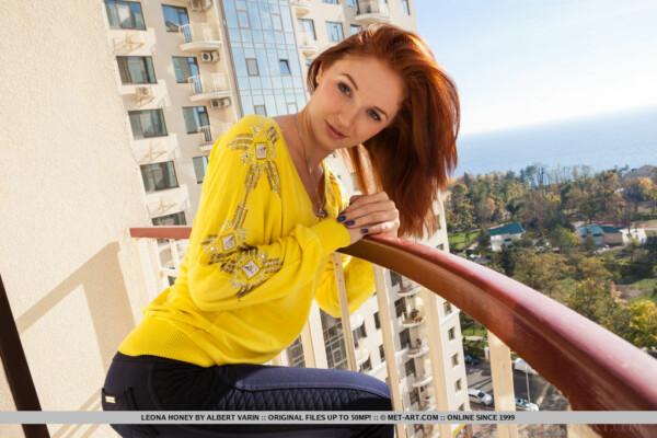 年轻的红发在业余图片 15