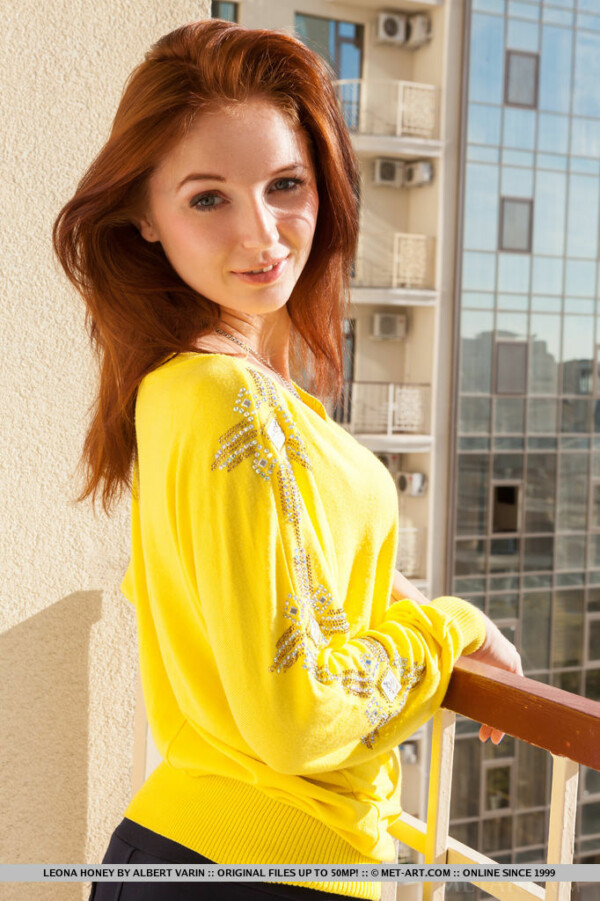 年轻的红发在业余图片 8