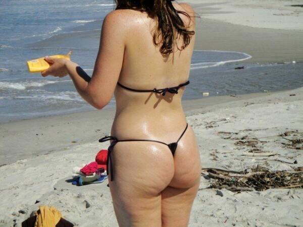 顽皮的尾巴绳在海滩上全棕褐色 11